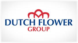 logo-dutchflowergroup